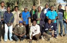 CIMENTOS DE MOÇAMBIQUE | Formação de Ambiente